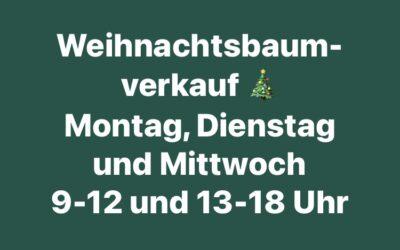 Weihnachtsbaum-Endspurt